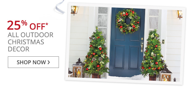 Outdoor Christmas dcor on sale.