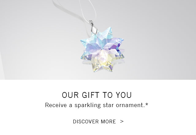 A sparkling star ornament for you