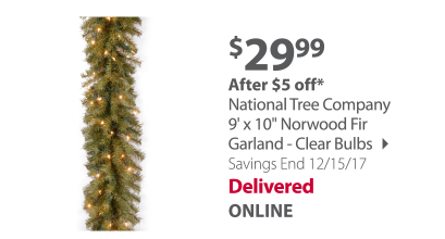 National Tree Company Garland