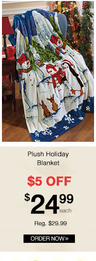 Plush Holiday Blanket