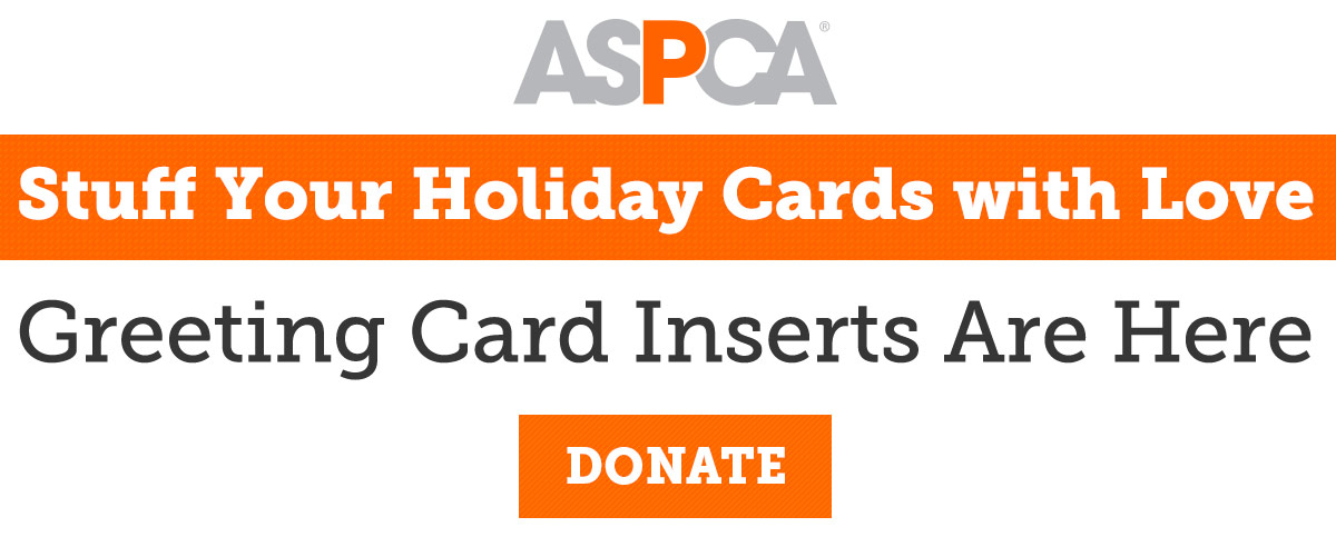 Aspca send love through the mail milled stuff your holiday cards with love m4hsunfo