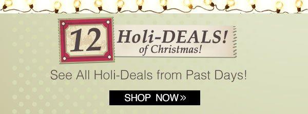 12 Holi-Deals of Christmas!