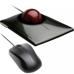 Mouse or Trackball