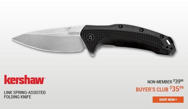 Kershaw Link Spring-Assisted Folding Knife