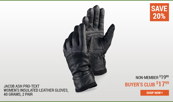 Igloos Pro-Text Women's Insulated Leather Gloves, 40 Grams, 2 Pair