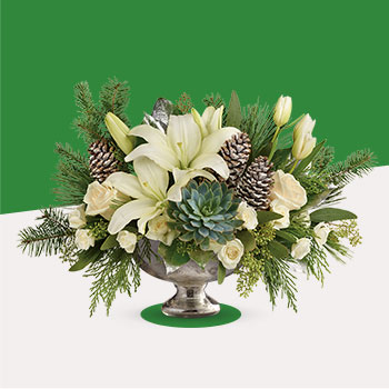 Telefloras Winter Wilds Centerpiece
