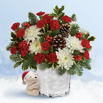 Send a Hug Bear Buddy Bouquet by Teleflora