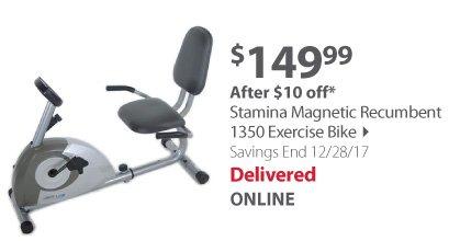stamina magnetic bike