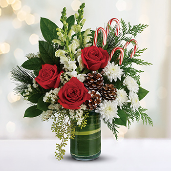 Telefloras Festive Pines Bouquet