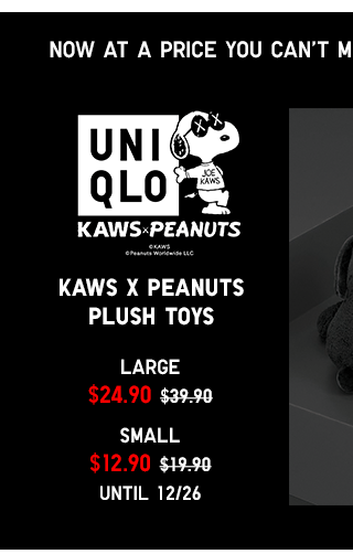 Limited Time Only Kaws x Peanuts Plush Toys