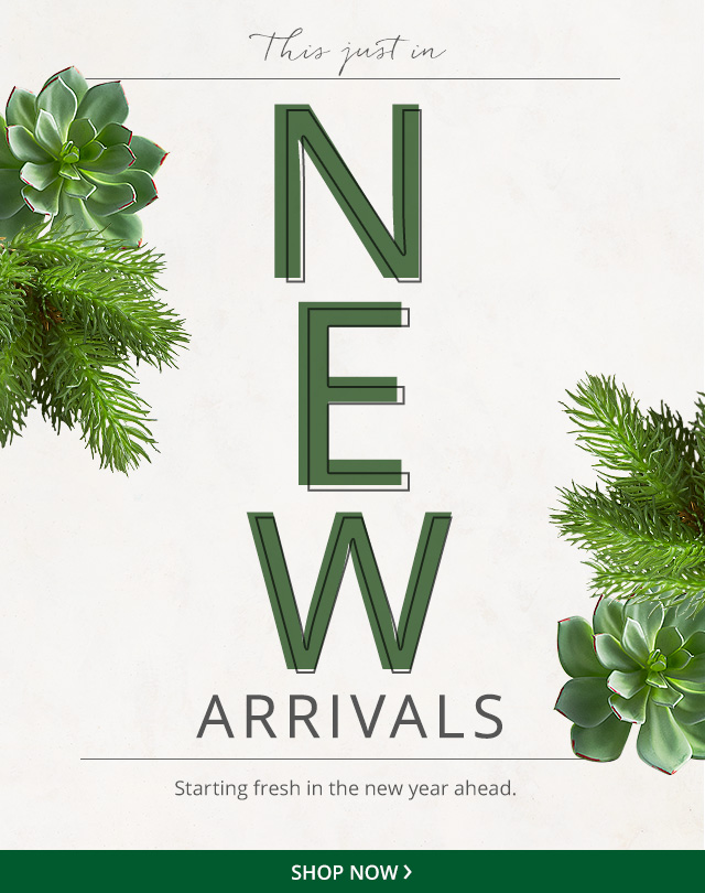 New Arrivals, shop now.