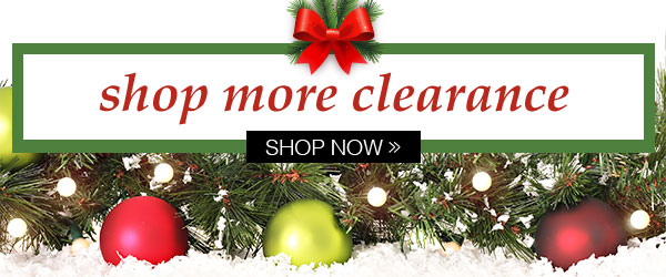 Shop More Clearance!