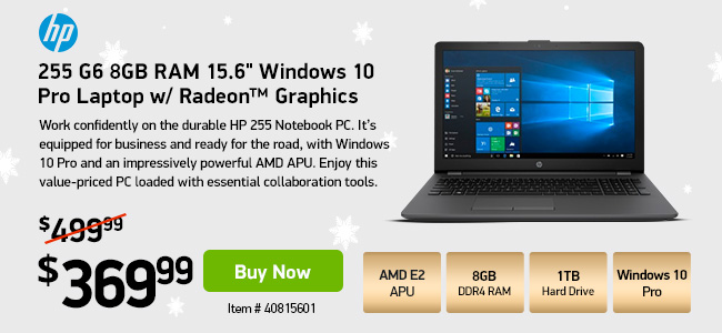 HP 255 G6 8GB RAM 15.6-inch Windows 10 Pro Laptop w/ Radeon Graphics