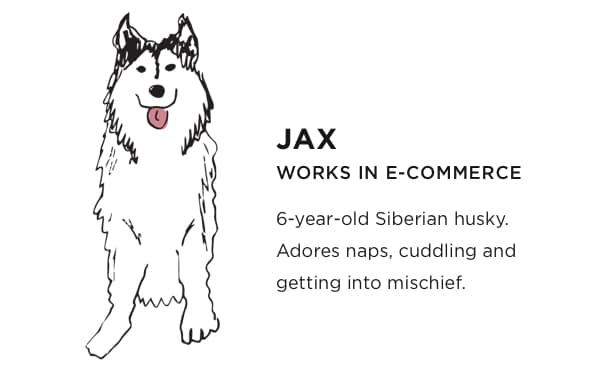 Jax: Works in E-commerce. Six year old Siberian Husky. Adores naps, cuddling and getting into mischief.