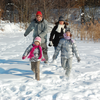 10 Excuses to go for a family walk on boxing day