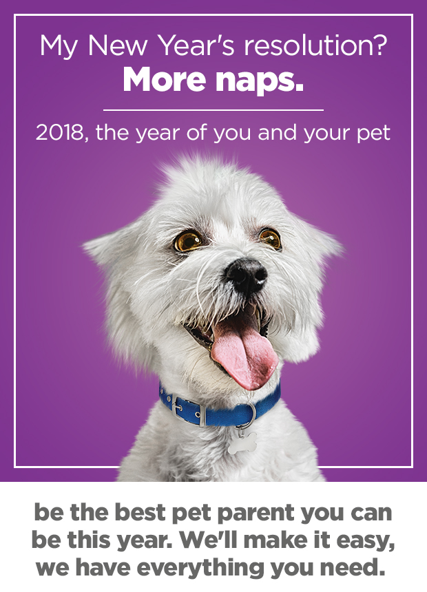 2018 is the year of you and your pet. Be the best pet parent you can be this year. We'll make it easy, we have everything you need.