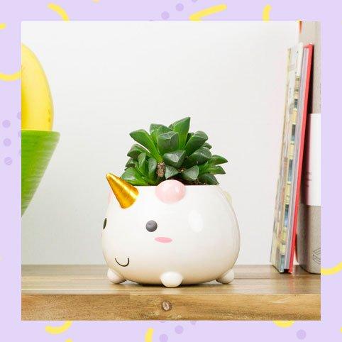 Elodie the Unicorn Planter