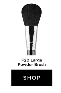 Shop F20 - LARGE POWDER BRUSH