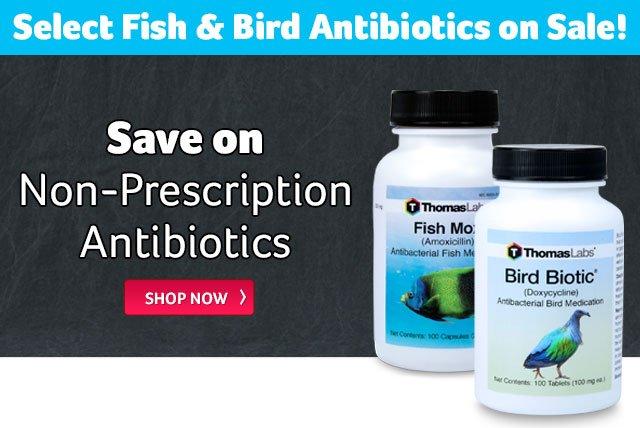 Revival Animal Health: Fish & Bird Antibiotic Specials   Milled