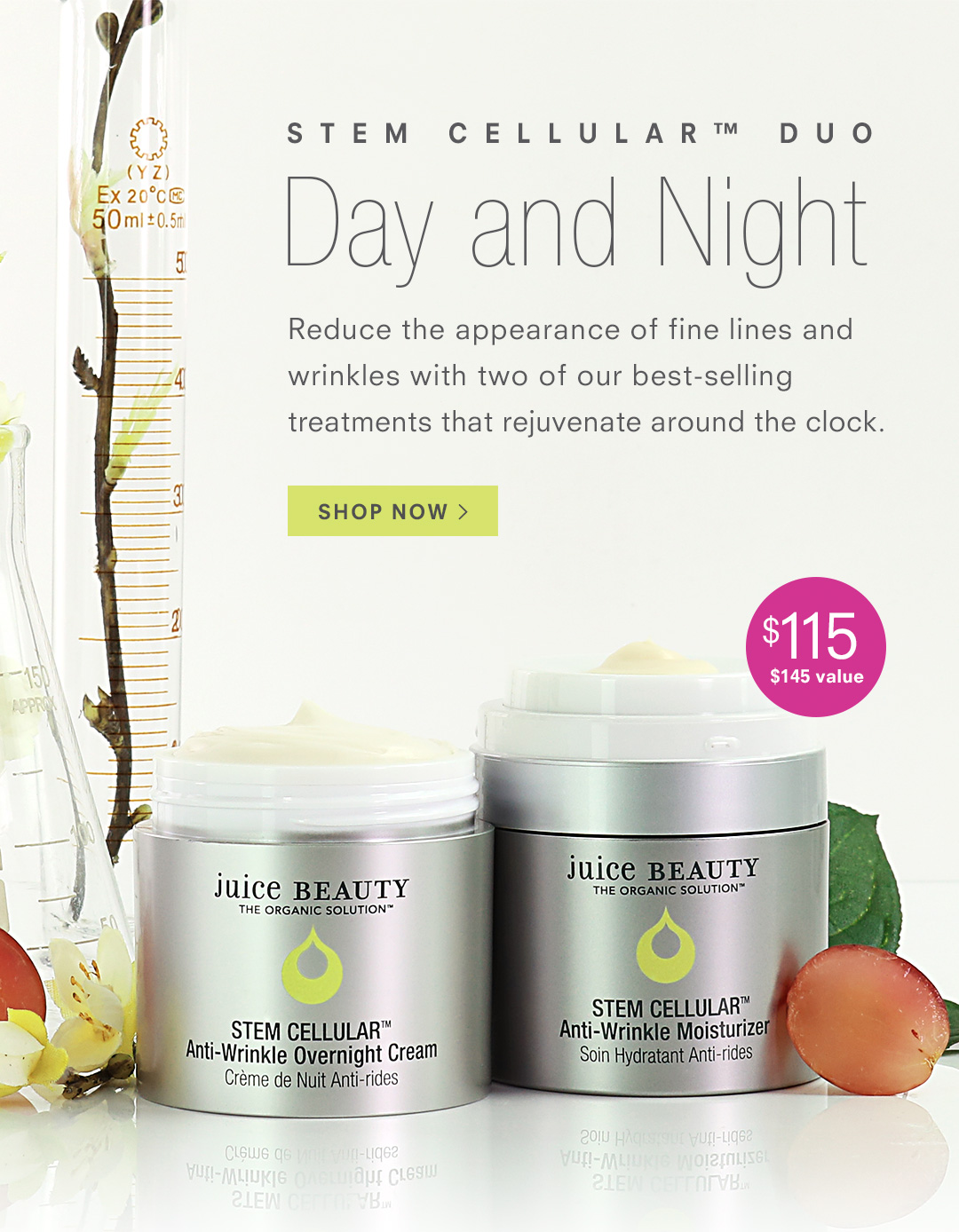 STEM CELLULAR Day and Night Duo