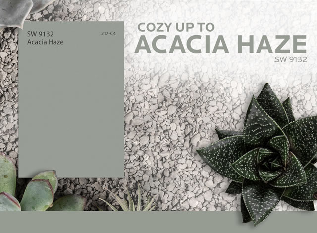 Sherwin Williams Home Acacia Haze Is This Month S Color Milled
