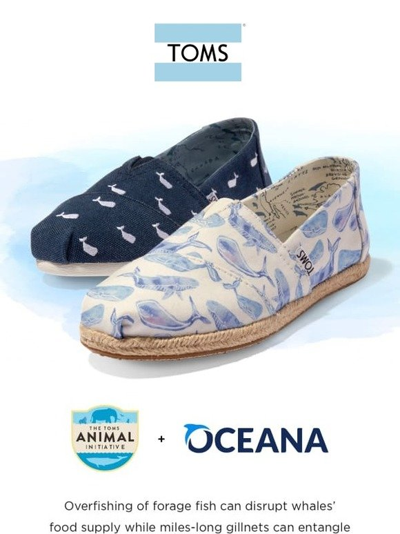 f0fe3b1bac9 TOMS  🐳 🐳 Two words  WHALE CLASSICS 🐳 🐳