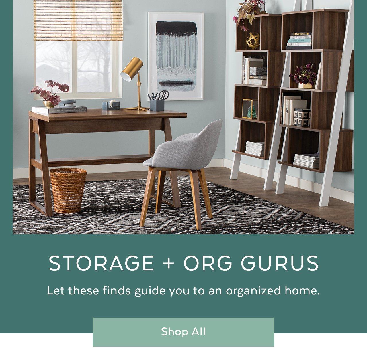 Storage + Org