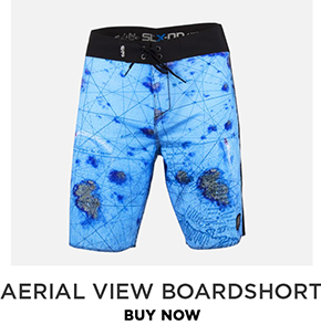 Aerial View Performance Boardshorts