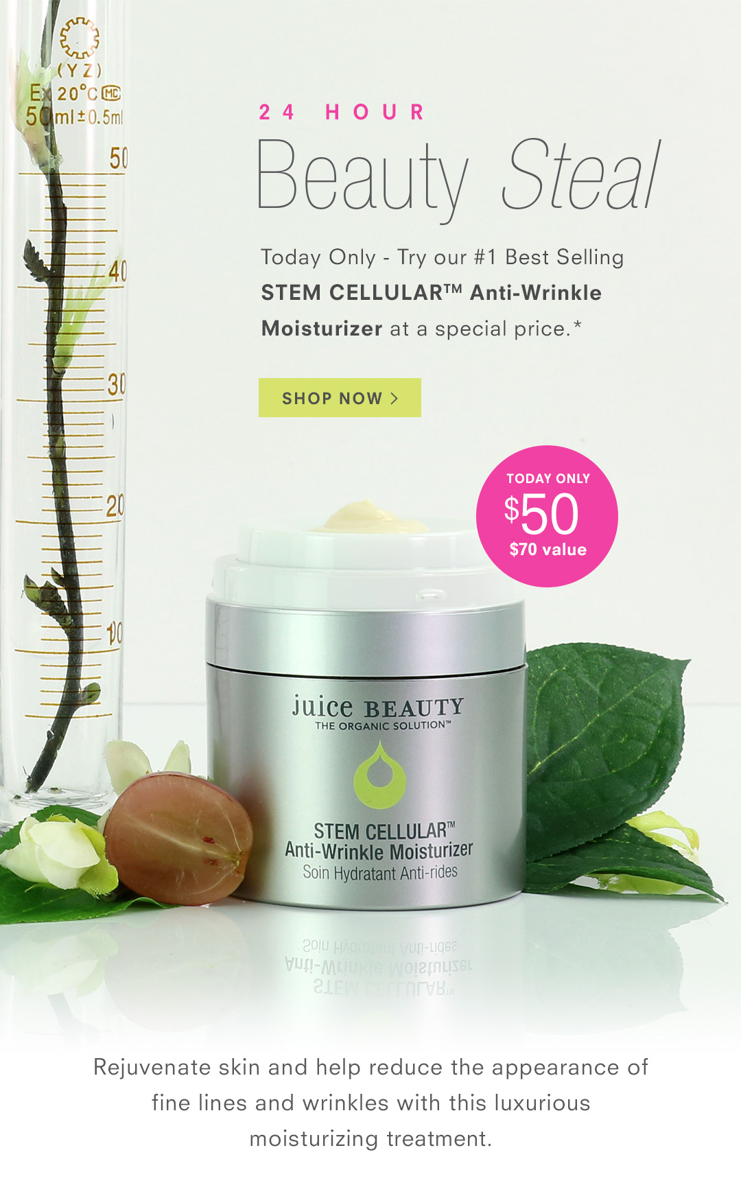 24 Hour Beauty Steal - Save on our #1 Best Seller