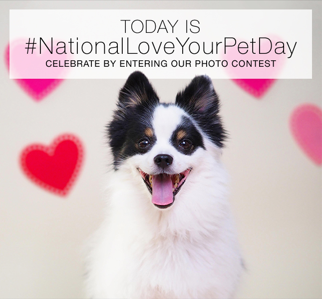 TODAY IS #NationalLoveYourPetDay | CELEBRATE BY ENTERING OUR PHOTO CONTEST