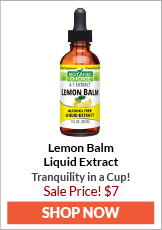 Lemon Balm Liquid Extract | Tranquility in a Cup!
