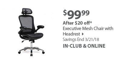 Executive Mesh Chair w/ Headrest