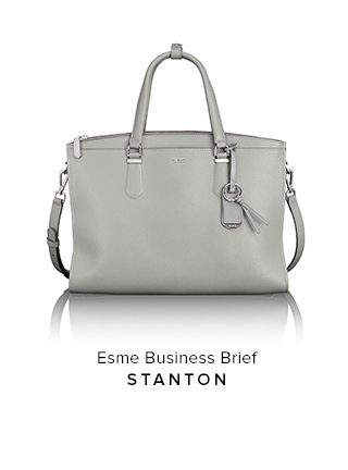 Esme Business Brief