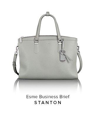 Esme Business Brief
