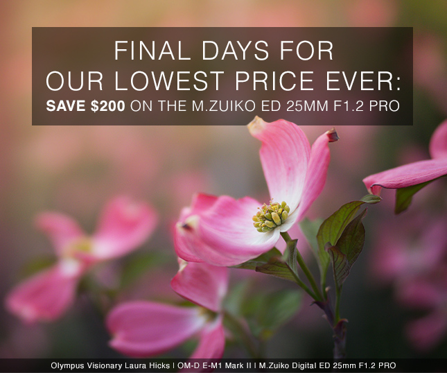 FINAL DAYS FOR OUR LOWEST PRICE EVER