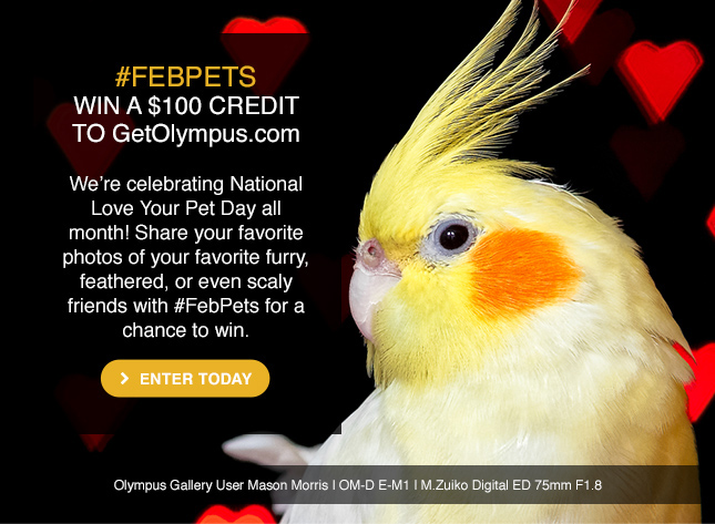 Share photos of your favorite pets with #FebPets for a chance to win $100 to GetOlympus.com