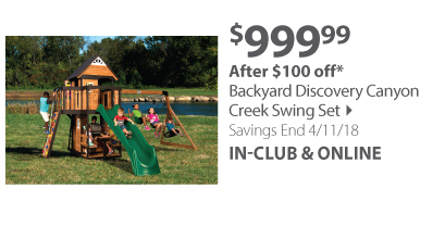 Canyon Creek Swing Set