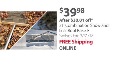 21' Combination Snow and Leaf Roof Rake