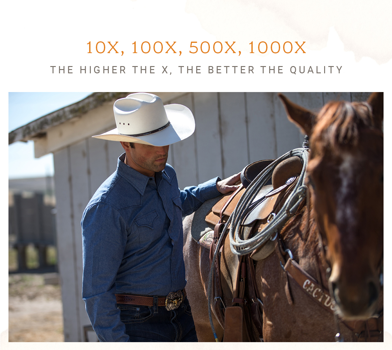 ce6d96ea7f90a 10X, 100X, 500X, 1000X - The Higher the X, The Better the