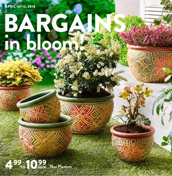 Christmas Tree Shops Union Nj: Christmas Tree Shops: Springtime Bargains Are In Bloom