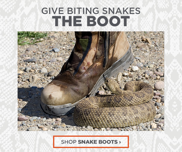Give Biting Snakes The Boot - Shop Snake Boots