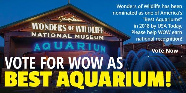 WOW - Vote for the Best Aquarium