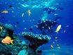 5 nap kikapcsolds a Vrs-tenger partjn!