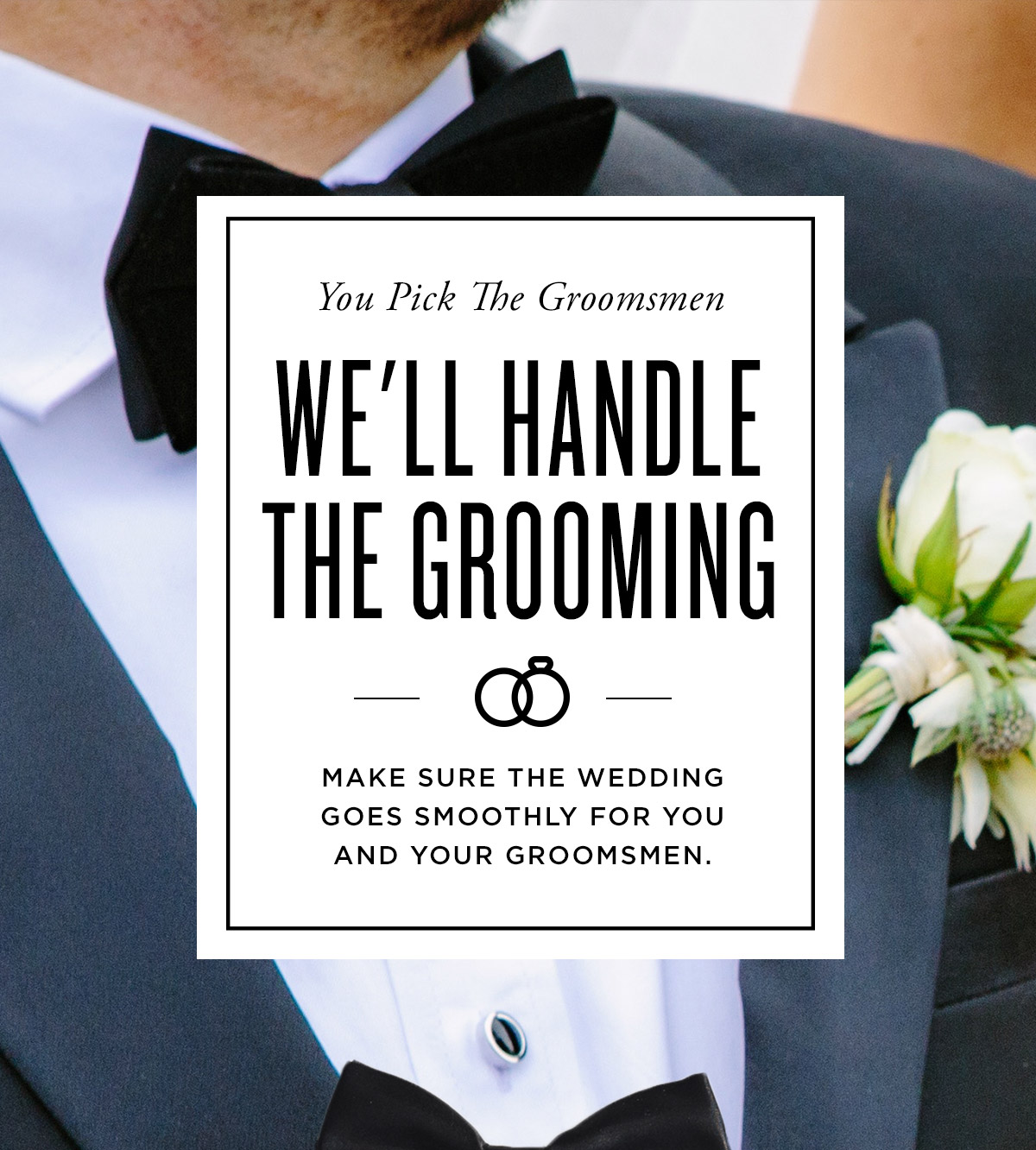 We'll Handle the Grooming