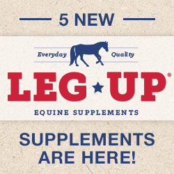 5 NEW Leg Up supplements are here!