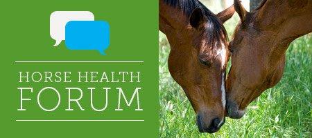 Horse Health Forum