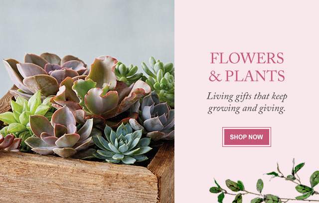 Flowers & Plants  - Living gifts that keep growing and giving.