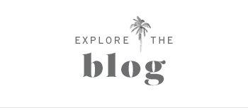 Explore the blog