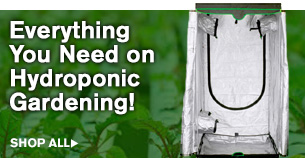 Everything You Need In Hydroponic Gardening!