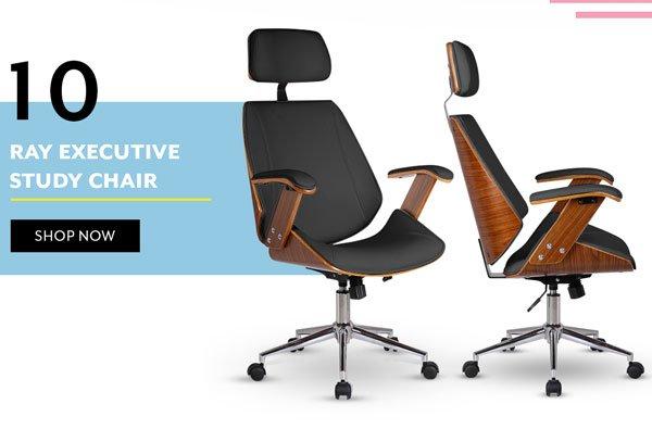 Ray Executive Study Chair